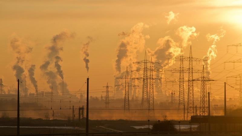 Apklausa: pandemijos metu sumažėjo vokiečių dėmesys klimato kaitai